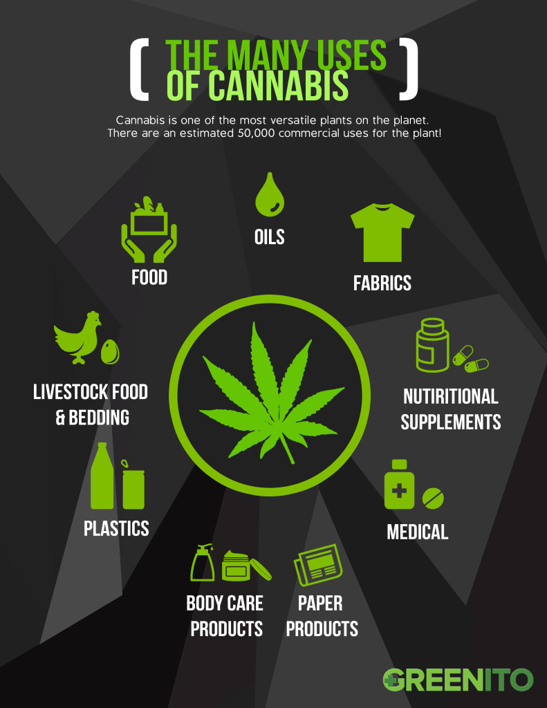 Greenito Infographic the uses of cannabis