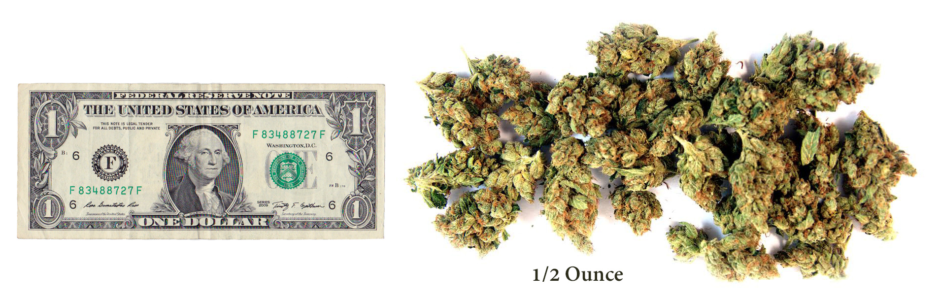 how much is a gram, quarter, half ounce of weed? | greenito