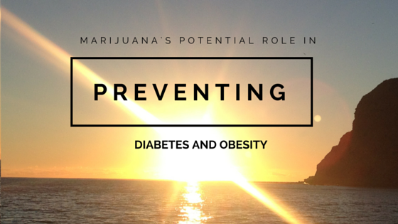 Greenito Learn about Marijuana's Potential Role in Preventing Diabetes and Obesity