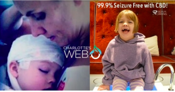 Greenito find dispensaries that have Charlotte's Web