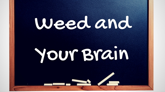 Weed and Your Brain Greentio