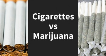 Cannabis and tobacco smoke are not equally carcinogenic