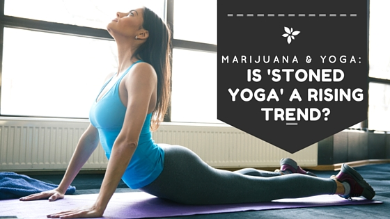 "Weed and Yoga: Is ""Stoned Yoga"" a Rising Trend? Greenito"