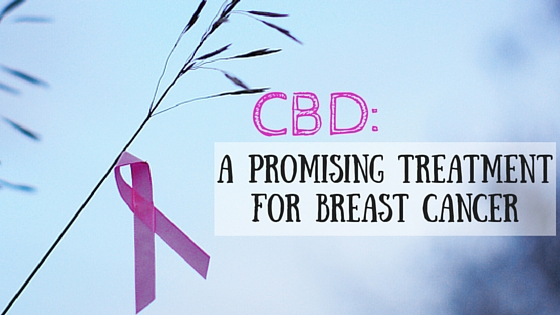 CBD a promising treatment for breast cancer Greenito