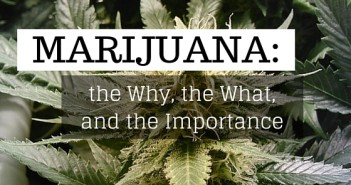 Marijuana: the why, the what, the importance greenito
