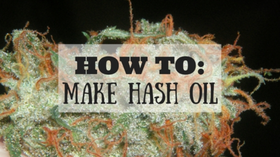 How To Make Your Own Hash Oil Greenito
