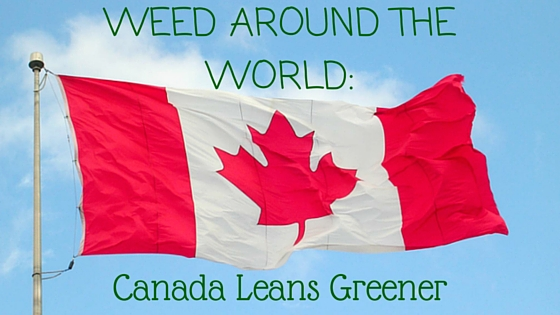 Weed Around the World: Canada Leans Greener Greenito