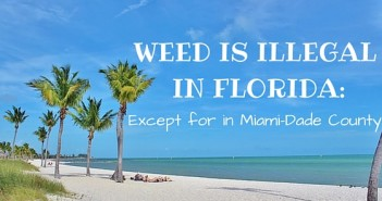 Marijuana Legal in Florida Greenito