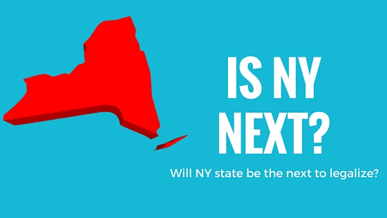 Is NY Next