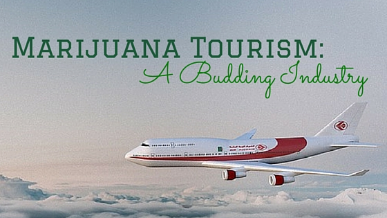 Marijuana Tourism: A Budding Industry Greenito