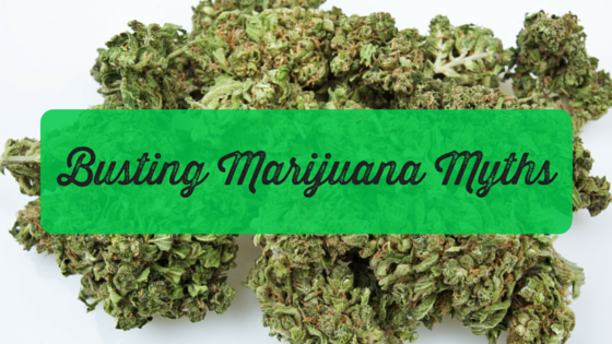 Busting Marijuana Myths blog post