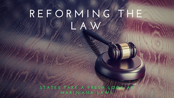REFORMING THE LAW