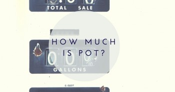 HOW MUCH IS POT-