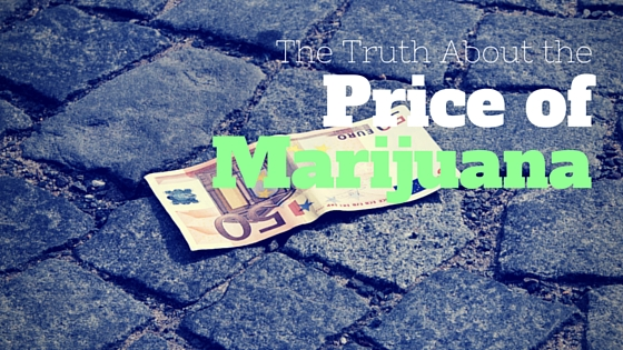 the myths and truths about marijuana Tthere are three major groups of marijuana these are: cannabis sativa, cannabis sativa forma indica, and cannabis ruderalis.
