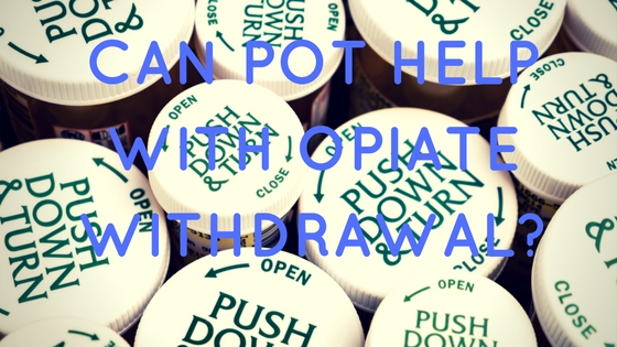 Can Pot Help With Opiate Withdrawal-